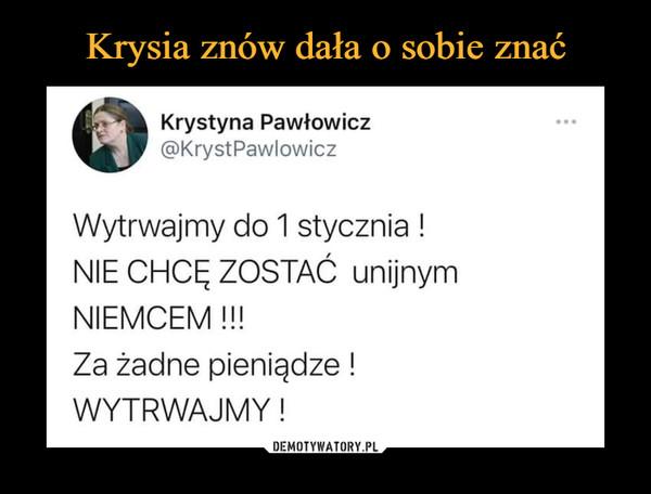 –  Krystyna Pawłowicz @KrystPawlowicz Wytrwajmy do 1 stycznia ! NIE CHCĘ ZOSTAĆ unijnym NIEMCEM !!! Za żadne pieniądze ! WYTRWAJMY !