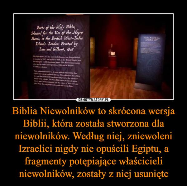 Biblia Niewolników to skrócona wersja Biblii, która została stworzona dla niewolników. Według niej, zniewoleni Izraelici nigdy nie opuścili Egiptu, a fragmenty potępiające właścicieli niewolników, zostały z niej usunięte –