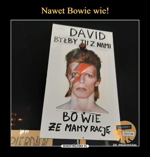 Nawet Bowie wie!