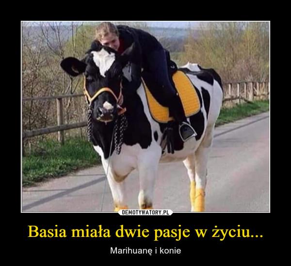 Basia miała dwie pasje w życiu... – Marihuanę i konie
