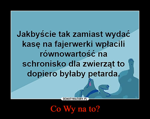 Co Wy na to?