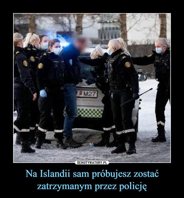Na Islandii sam próbujesz zostać zatrzymanym przez policję –