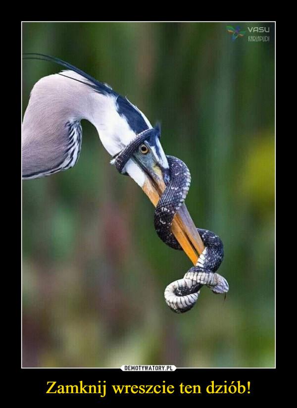 Zamknij wreszcie ten dziób! –