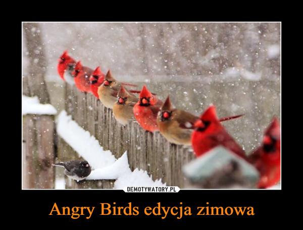 Angry Birds edycja zimowa –
