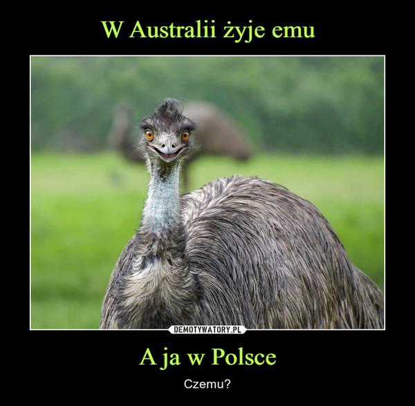 A ja w Polsce – Czemu?