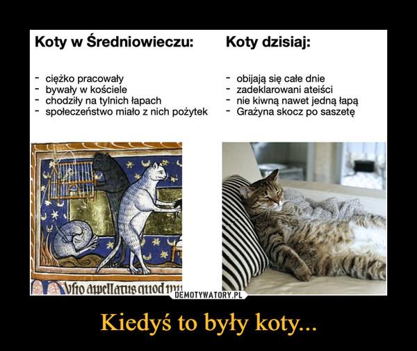 Kiedyś to były koty... –  Koty w Średniowieczu:Koty dzisiaj:ciężko pracowały- bywały w kościelechodziły na tylnich łapachspołeczeństwo miało z nich pożytekobijają się całe dniezadeklarowani ateiścinie kiwną nawet jedną łapąGrażyna skocz po saszetęAVfio apellatus quod mu
