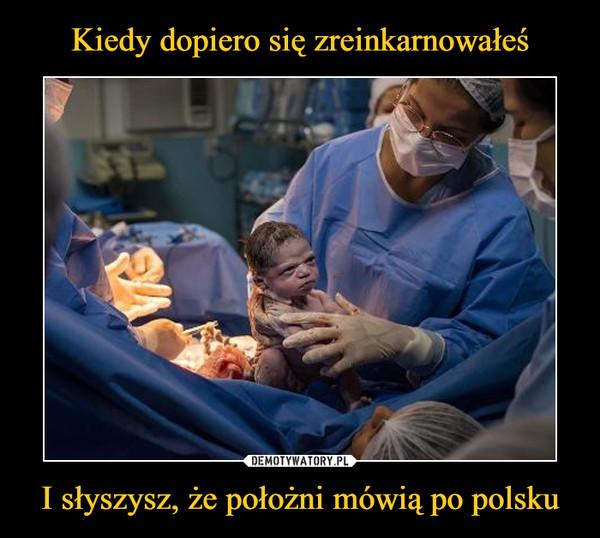 I słyszysz, że położni mówią po polsku –