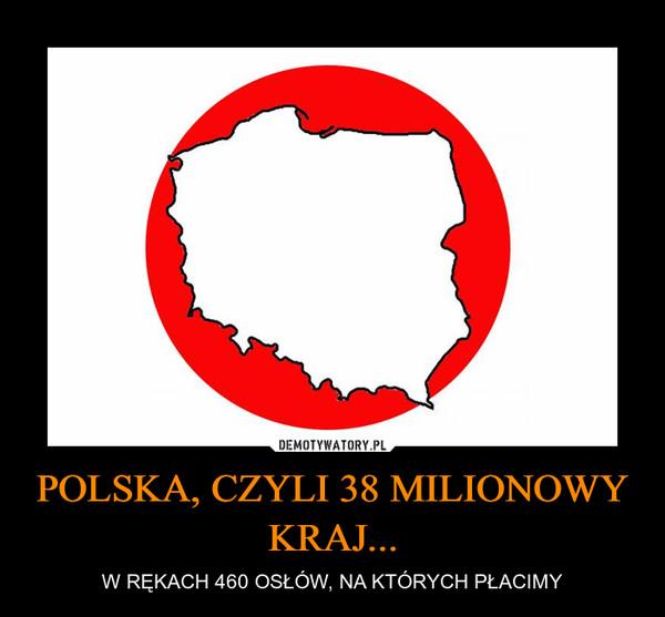 POLSKA, CZYLI 38 MILIONOWY KRAJ... – W RĘKACH 460 OSŁÓW, NA KTÓRYCH PŁACIMY
