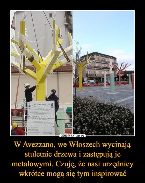 W Avezzano, we Włoszech wycinają stuletnie drzewa i zastępują je metalowymi. Czuję, że nasi urzędnicy wkrótce mogą się tym inspirować –