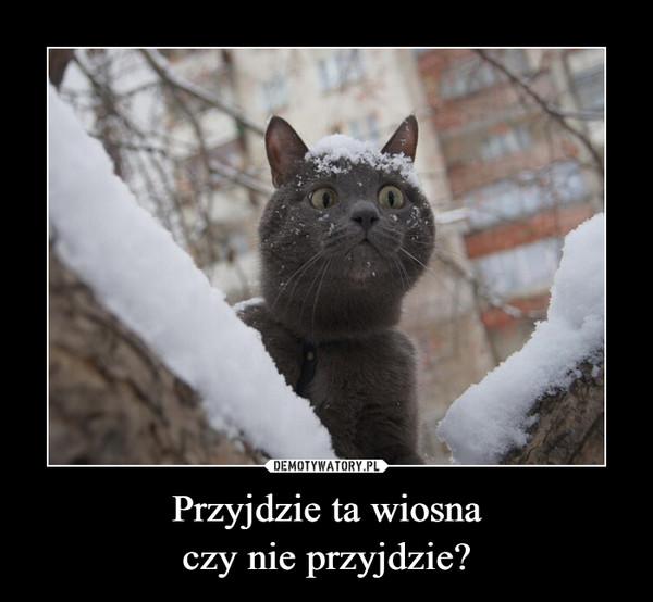 Przyjdzie ta wiosnaczy nie przyjdzie? –