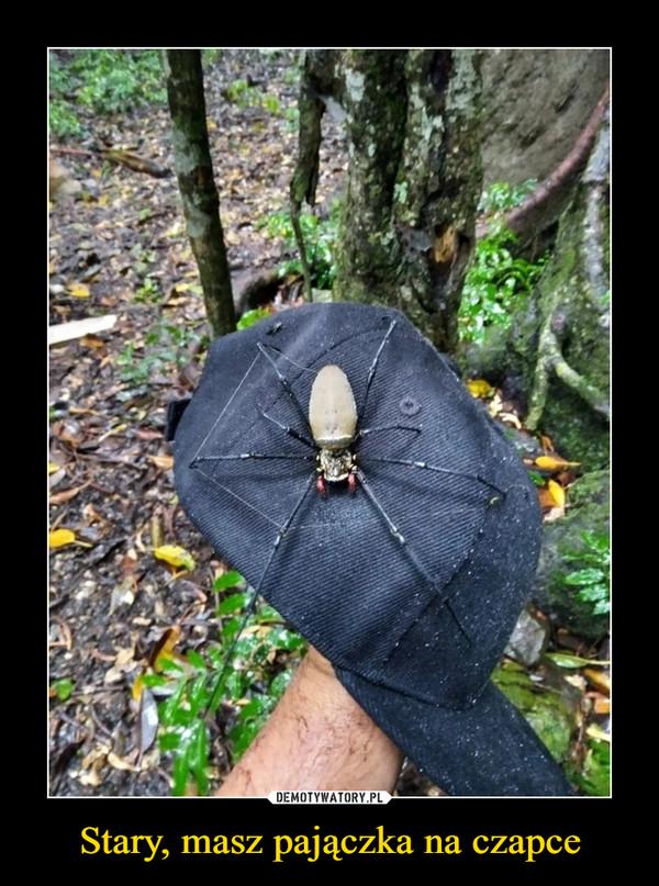 Stary, masz pajączka na czapce –