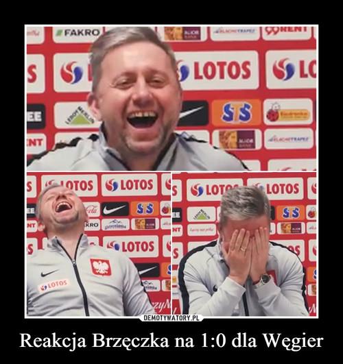 Reakcja Brzęczka na 1:0 dla Węgier