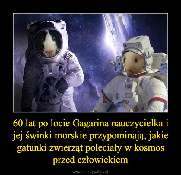 60 lat po locie Gagarina nauczycielka i jej świnki morskie przypominają, jakie gatunki zwierząt poleciały w kosmos przed człowiekiem –
