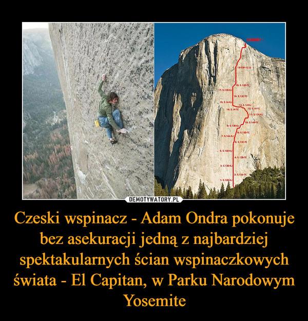 Czeski wspinacz - Adam Ondra pokonuje bez asekuracji jedną z najbardziej spektakularnych ścian wspinaczkowych świata - El Capitan, w Parku Narodowym Yosemite –