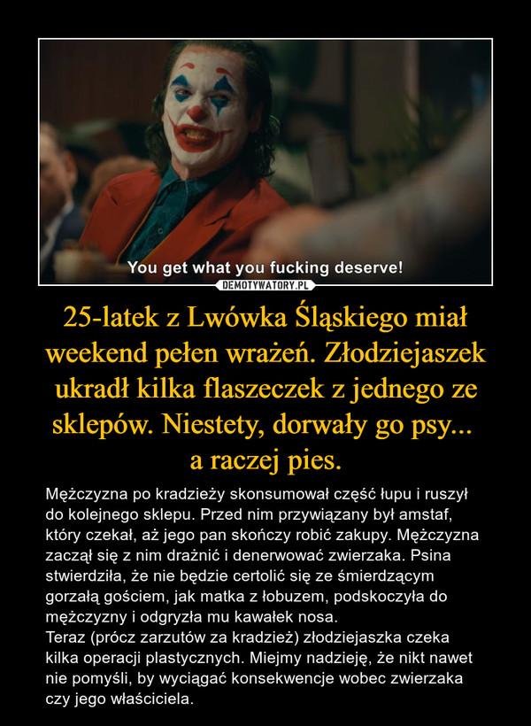 25-latek z Lwówka Śląskiego miał weekend pełen wrażeń. Złodziejaszek ukradł kilka flaszeczek z jednego ze sklepów. Niestety, dorwały go psy...  a raczej pies.