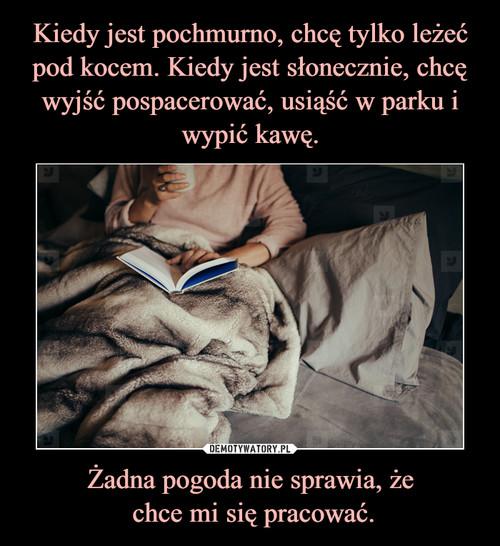 Kiedy jest pochmurno, chcę tylko leżeć pod kocem. Kiedy jest słonecznie, chcę wyjść pospacerować, usiąść w parku i wypić kawę. Żadna pogoda nie sprawia, że  chce mi się pracować.