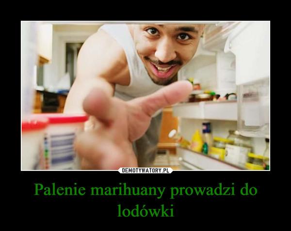 Palenie marihuany prowadzi do lodówki –