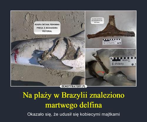 Na plaży w Brazylii znaleziono martwego delfina