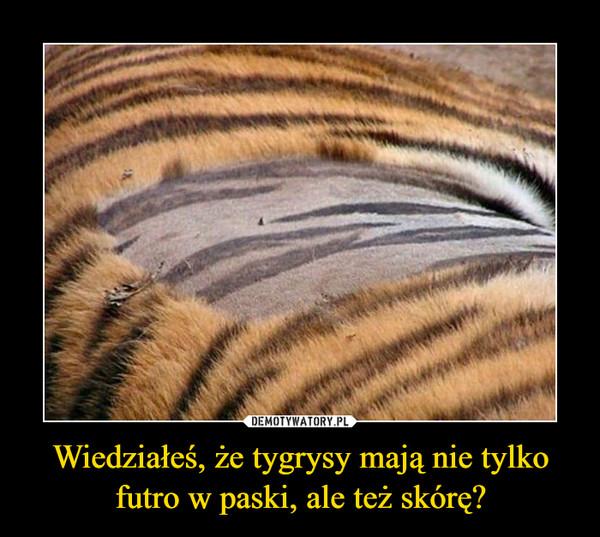 Wiedziałeś, że tygrysy mają nie tylko futro w paski, ale też skórę? –