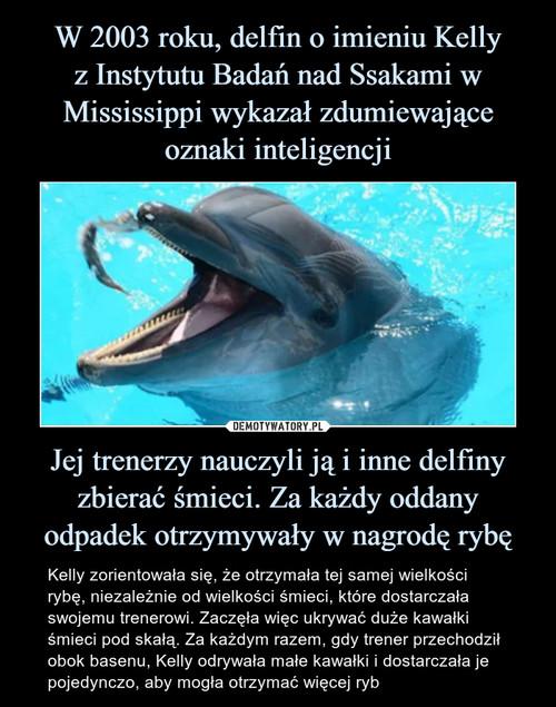 W 2003 roku, delfin o imieniu Kelly z Instytutu Badań nad Ssakami w Mississippi wykazał zdumiewające oznaki inteligencji Jej trenerzy nauczyli ją i inne delfiny zbierać śmieci. Za każdy oddany odpadek otrzymywały w nagrodę rybę