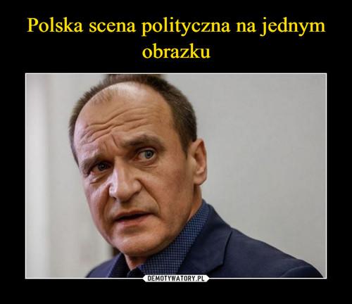 Polska scena polityczna na jednym obrazku