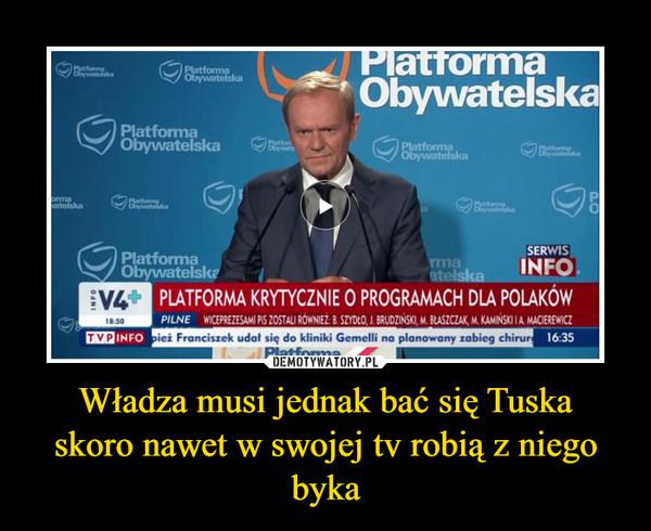 Władza musi jednak bać się Tuskaskoro nawet w swojej tv robią z niego byka –
