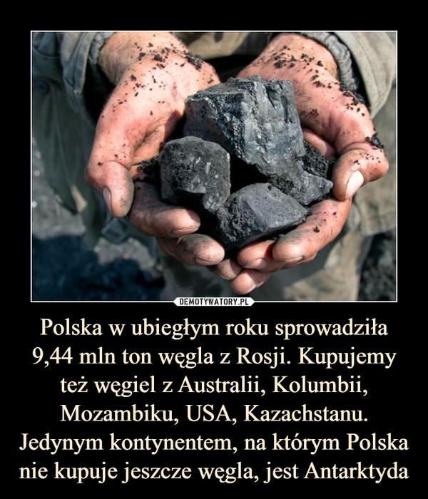 Polska w ubiegłym roku sprowadziła 9,44 mln ton węgla z Rosji. Kupujemy też węgiel z Australii, Kolumbii, Mozambiku, USA, Kazachstanu. Jedynym kontynentem, na którym Polska nie kupuje jeszcze węgla, jest Antarktyda –