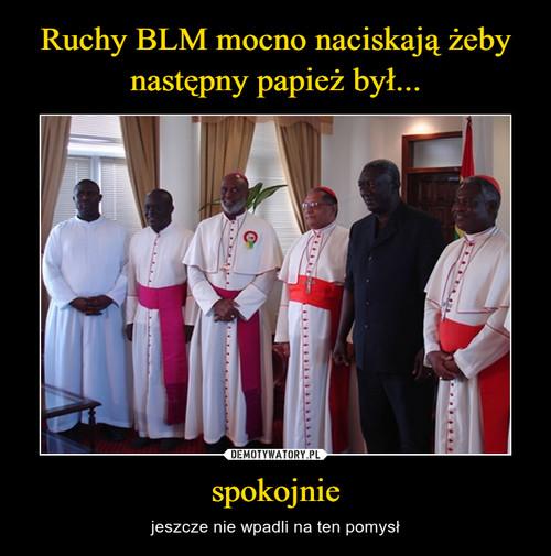 Ruchy BLM mocno naciskają żeby następny papież był... spokojnie