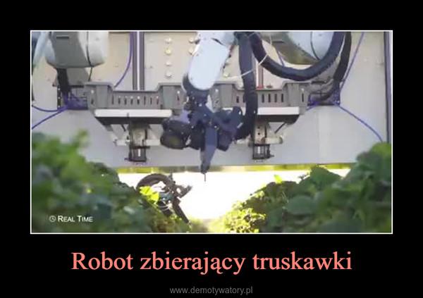 Robot zbierający truskawki –