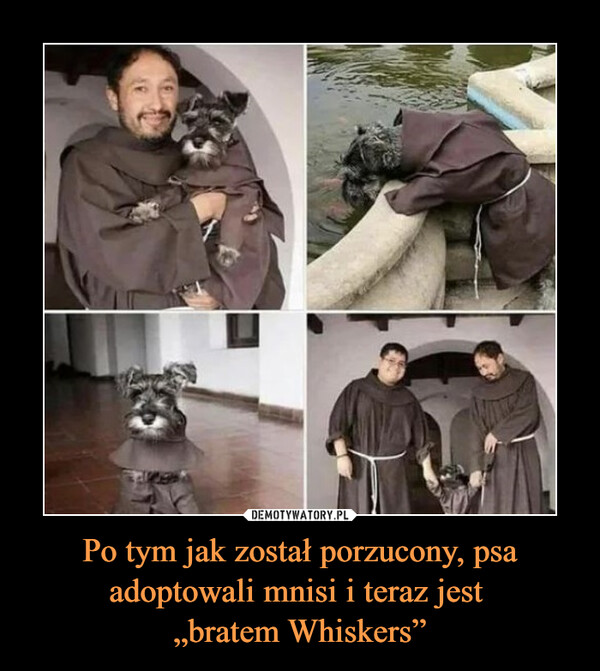 """Po tym jak został porzucony, psa adoptowali mnisi i teraz jest """"bratem Whiskers"""" –"""