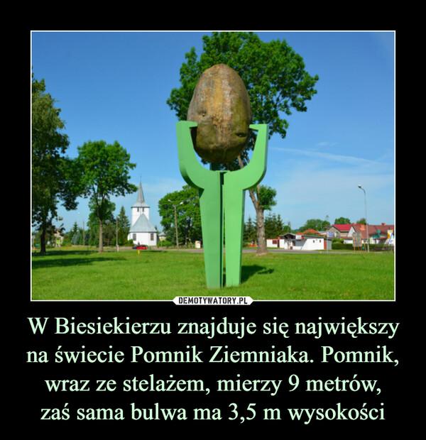 W Biesiekierzu znajduje się największy na świecie Pomnik Ziemniaka. Pomnik, wraz ze stelażem, mierzy 9 metrów,zaś sama bulwa ma 3,5 m wysokości –