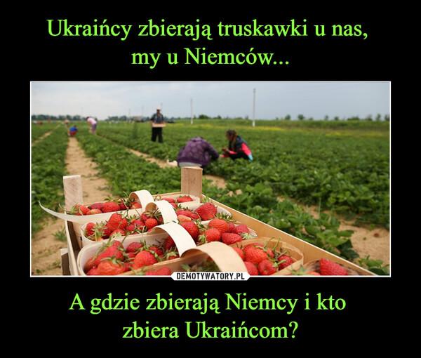 A gdzie zbierają Niemcy i kto zbiera Ukraińcom? –