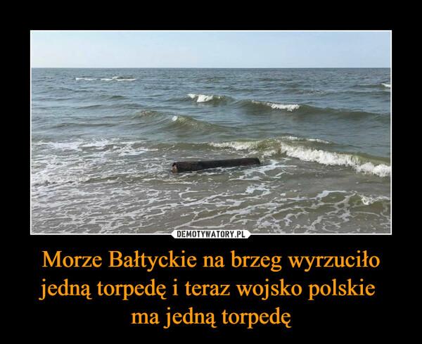 Morze Bałtyckie na brzeg wyrzuciło jedną torpedę i teraz wojsko polskie ma jedną torpedę –